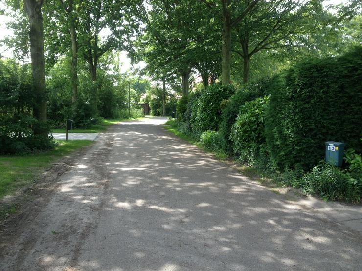 Bild 4: 4-P. Ferienhaus in Zeeland bei Domburg, strandnäh.