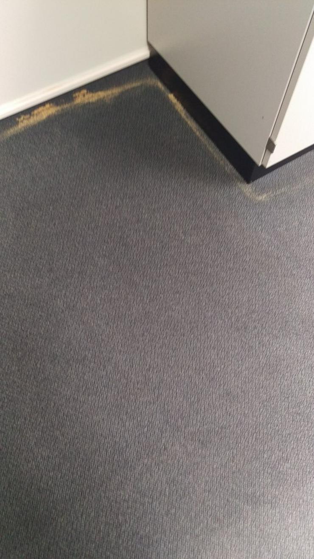 Bild 3: Teppichbodenreinigung in 57368 Lennestadt
