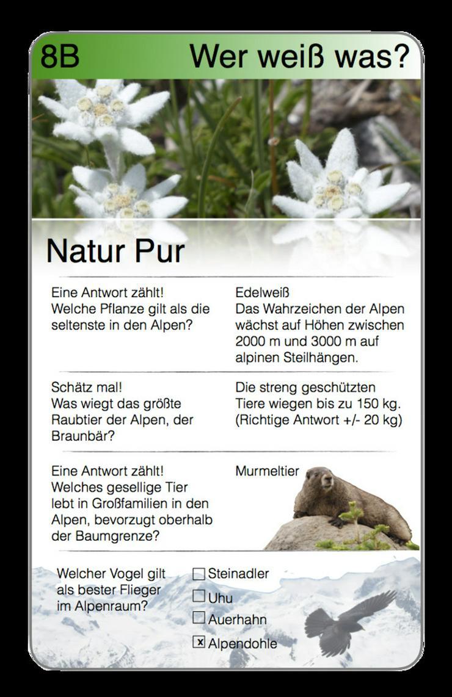 Bild 4: Alpen Trumpf - das neue Quartett