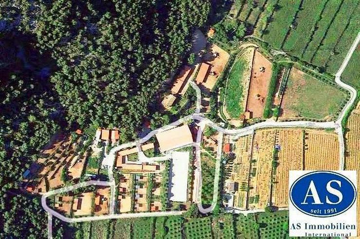 Pferdefreunde!., einzigartiges Pferdefarm auf ca. 110.000 qm Land zu verkaufen!!! - Auslandsimmobilien - Bild 1