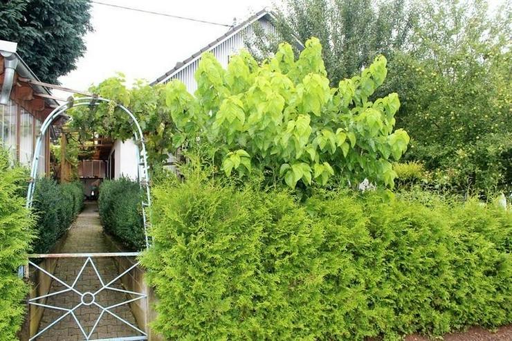St. Goar - Einfamilienhaus mit Wohnung und Garage in ruhiger Lage! - von Schlapp Immobilie... - Haus kaufen - Bild 1