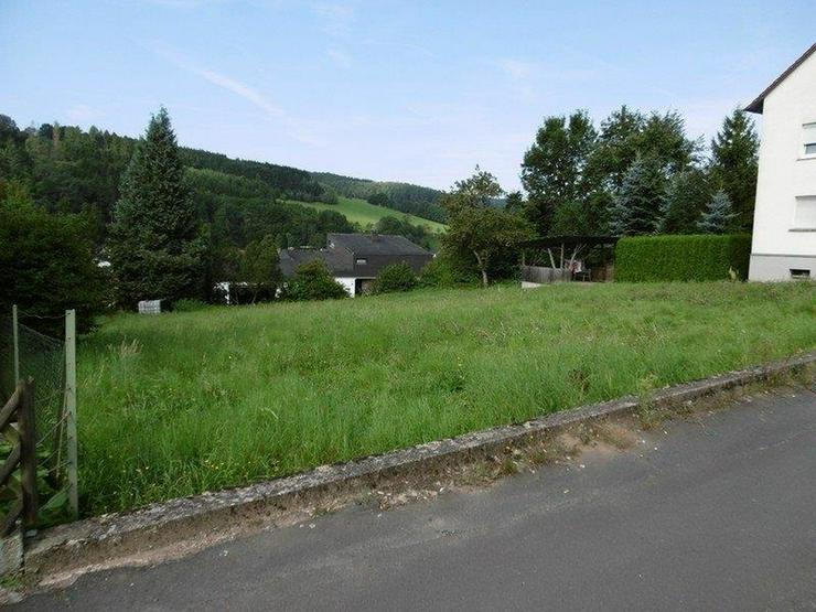 Bild 2: Großes Grundstück mit Blick über das Sinntal - von Schlapp Immobilien