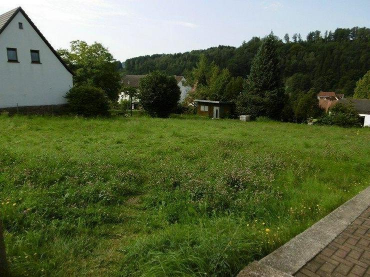 Bild 3: Großes Grundstück mit Blick über das Sinntal - von Schlapp Immobilien