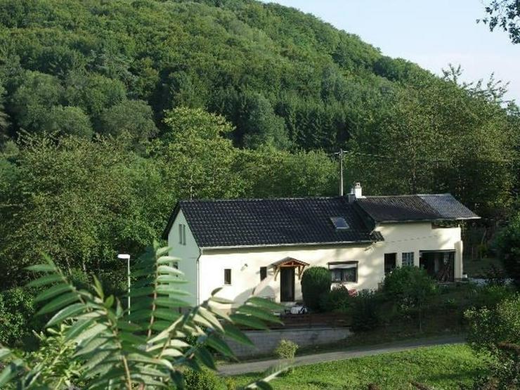 Waldnah und ruhig in der Vulkaneifel bei Utzerath EFH 4 Zimmer 1 Garage Gepflegter großer... - Haus kaufen - Bild 1