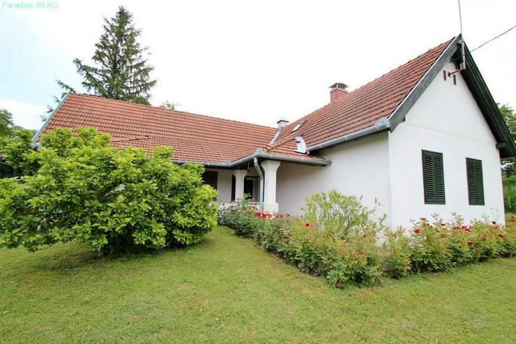 Bild 2: Landhaus auf großem Grund