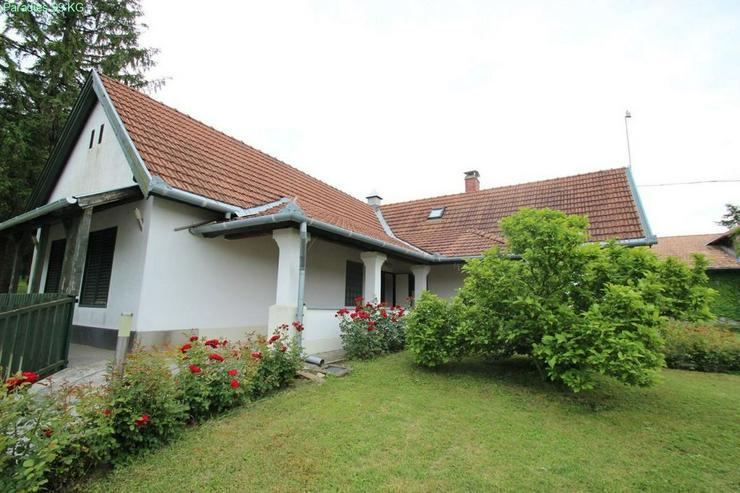 Bild 5: Landhaus auf großem Grund