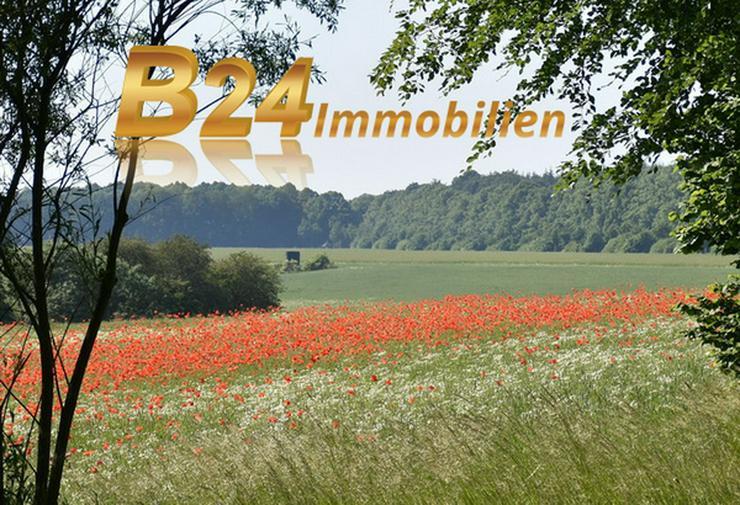 B24plus Großes Grundstück zur Gewerbenutzung baureifes Land