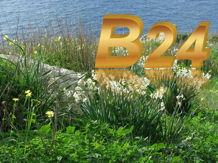 B24plus Baugrundstück in Kaßberg baureifes Land Zentrumsnah - Grundstück kaufen - Bild 1