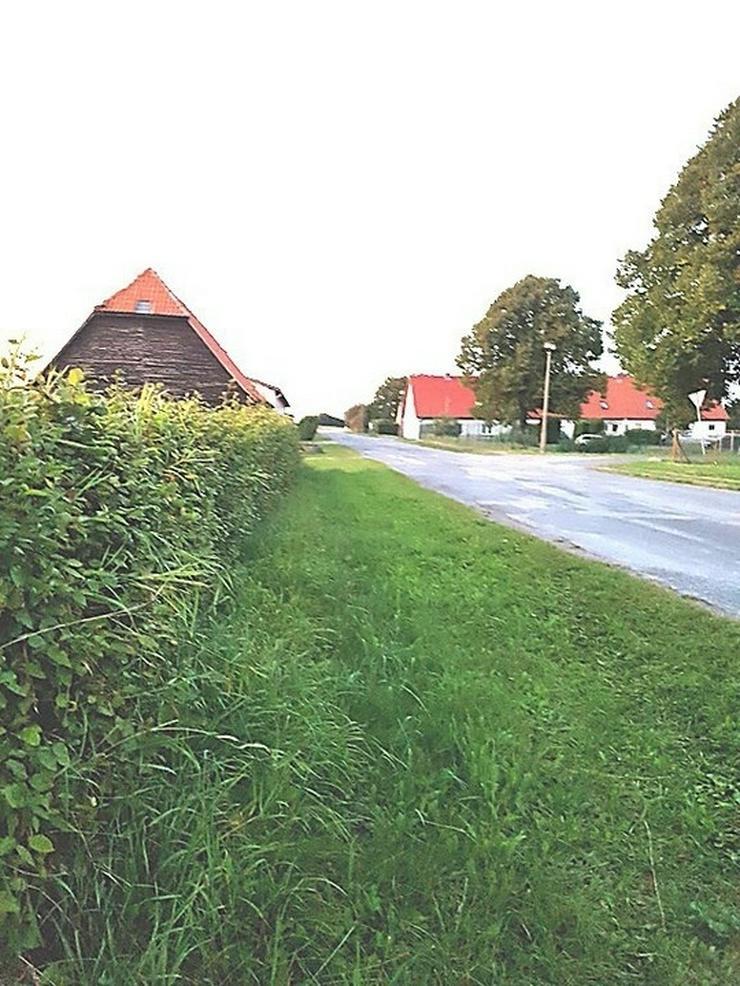 Bild 3: Auf dem Lande....