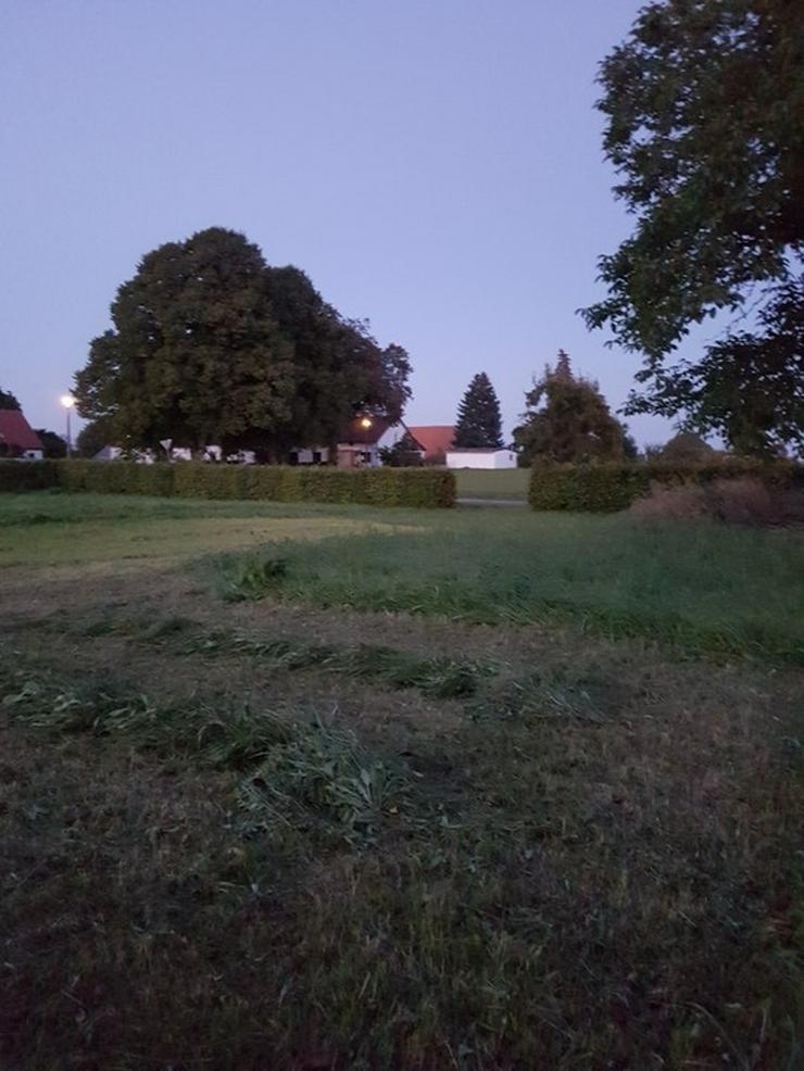 Bild 6: Auf dem Lande....