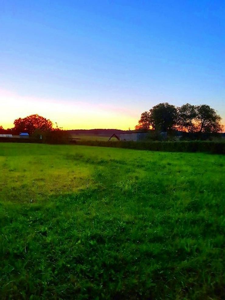 Bild 5: Auf dem Lande....