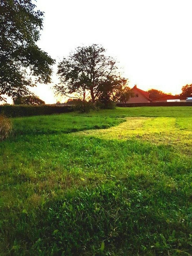Bild 4: Auf dem Lande....