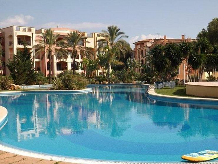 KAUF: Wohnung mit 3 Schlafzimmern in der Golf-Residenz - Auslandsimmobilien - Bild 1