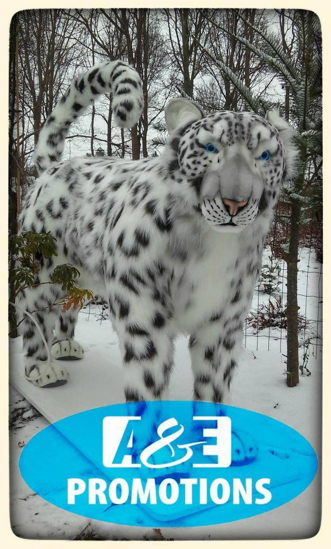 Bild 4: winter requisiten eisbären vermietung bremen
