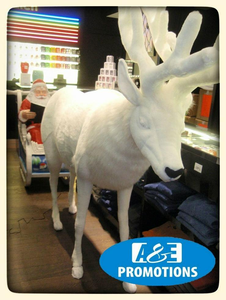 Bild 2: weihnachts deko verleih schlitten rentieren usw