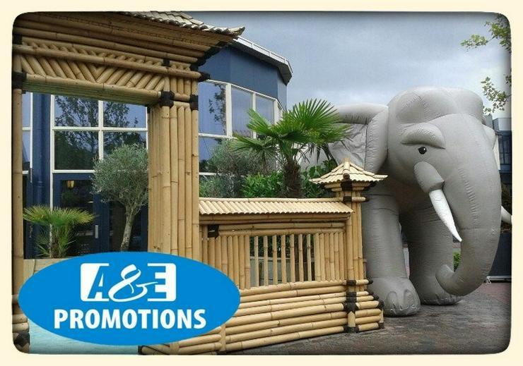 dschungel requisten elefant mieten - Party, Events & Messen - Bild 1