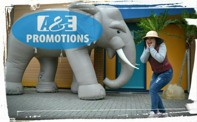 Bild 2: dschungel requisten elefant mieten