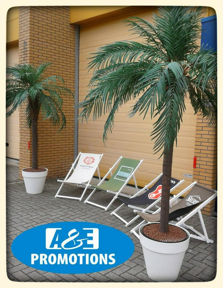 Bild 4: hawaii deko verleih palmen mieten bremen