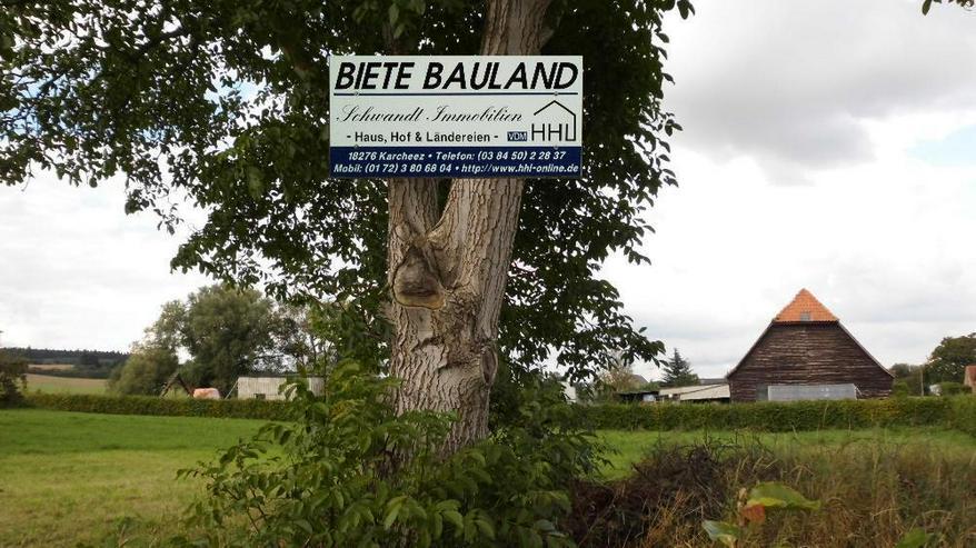 BAUGRUNDSTÜCK IN 18279 TOLZIN | 1-A LAGE (K 29) - Grundstück kaufen - Bild 1