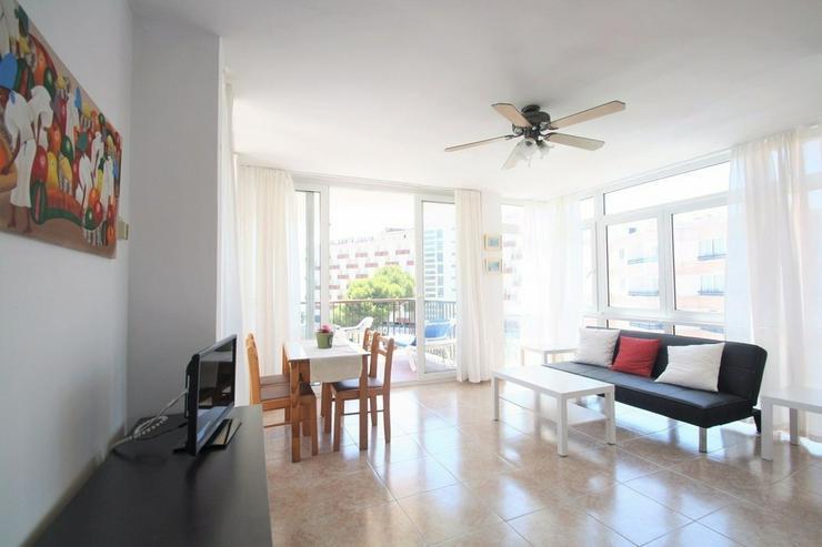 Bild 5: Penthouse zum Verkauf in Palmanova
