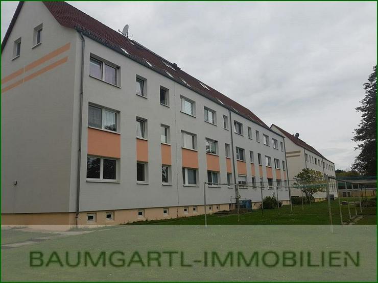 Zwenkau-Großdalzig - neu renovierte 2 Zimmerwohnung im Dachgeschoss