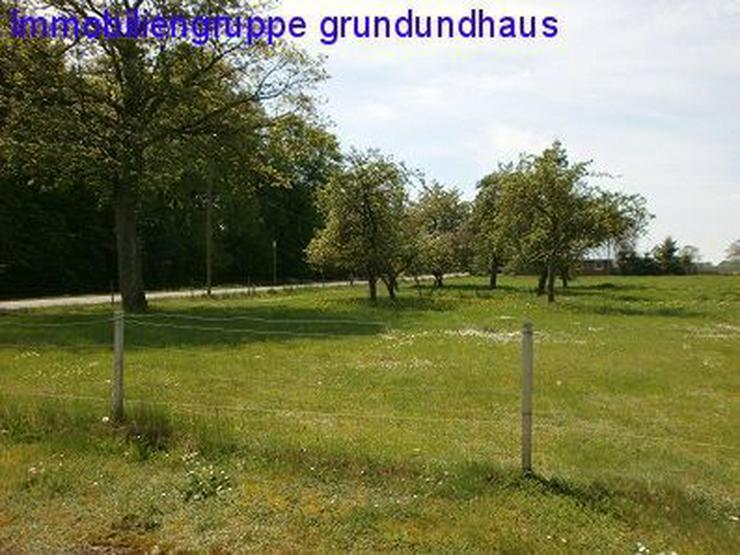 Bild 2: mit Vorbescheid! idyllischer Bauplatz zwischen Müritz und Plauer See