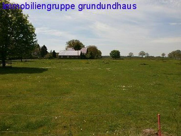 Bild 3: mit Vorbescheid! idyllischer Bauplatz zwischen Müritz und Plauer See