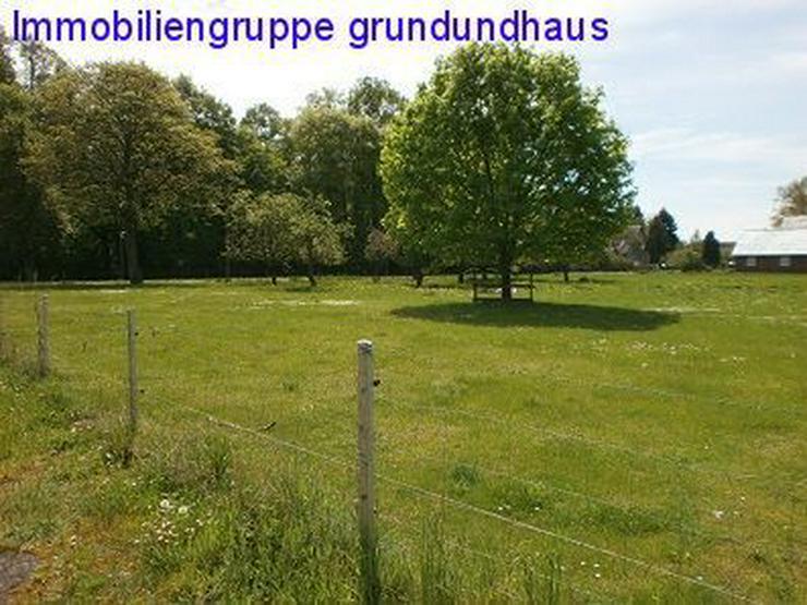 mit Vorbescheid! idyllischer Bauplatz zwischen Müritz und Plauer See - Grundstück kaufen - Bild 1