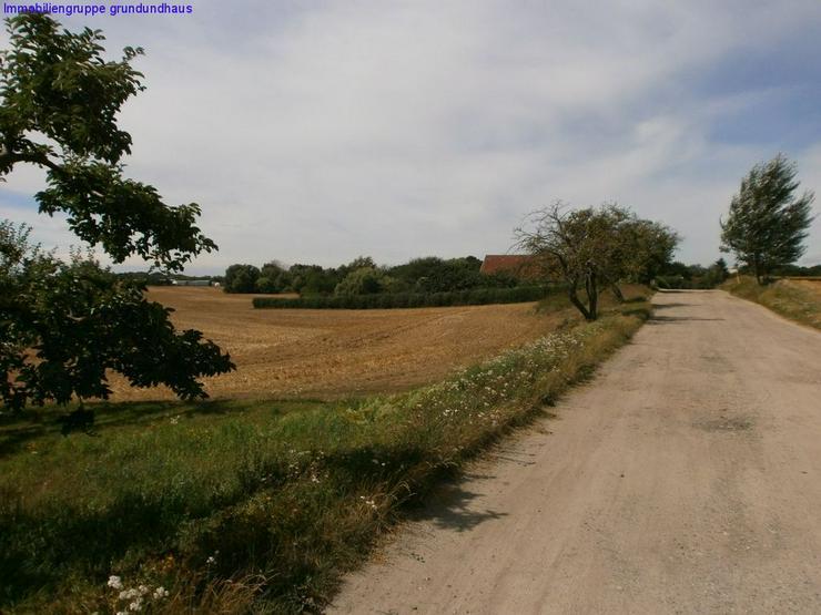 Bild 2: Natur pur: teilbarer Bauplatz mit Fernblick in Ruhiglage