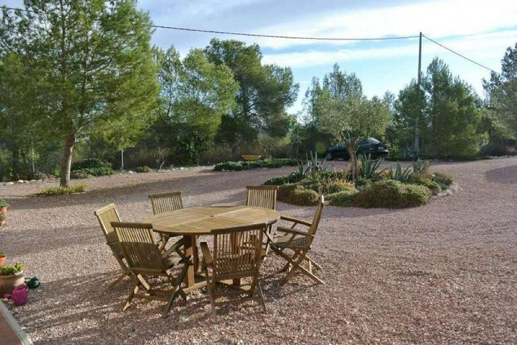 Bild 4: Villa mit Blick über Weinfelder