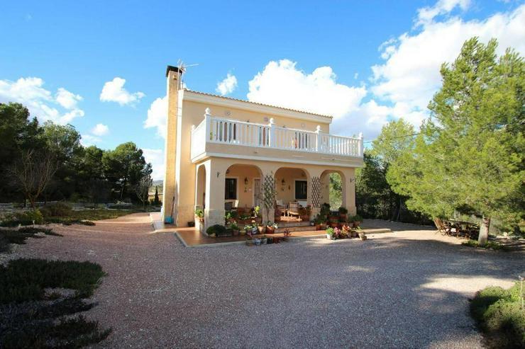 Villa mit Blick über Weinfelder - Haus kaufen - Bild 1