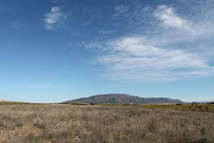 Bauland 5km von Pinoso - Grundstück kaufen - Bild 1