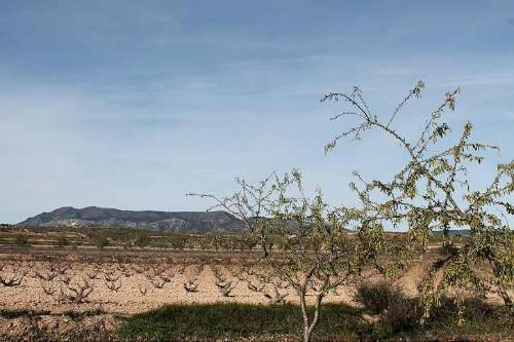 Bild 4: Casa de Campo, mit ein wenig Aufwand erhalten Sie ein Schmuckstück