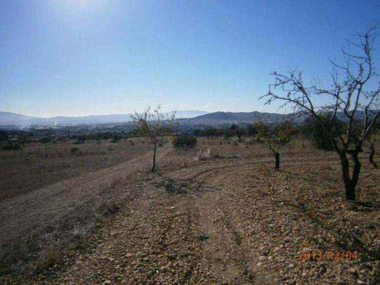 Bauland mit Mandelbäumen - Grundstück kaufen - Bild 1