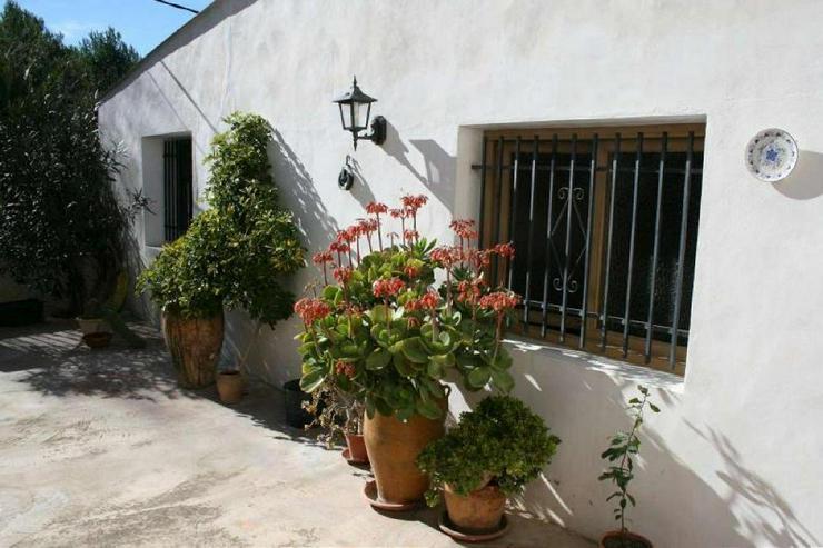 Bild 3: 100m² Garten bei diesem Dorfhaus
