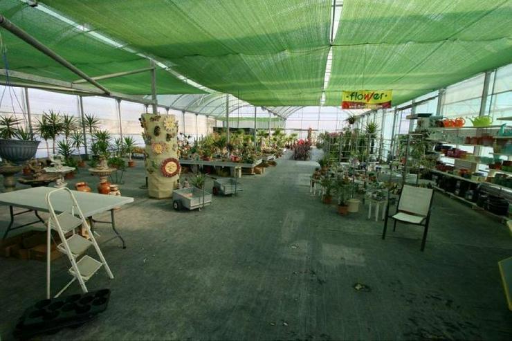 Bild 3: Gartencenter * mit Bauland für Wohnhaus