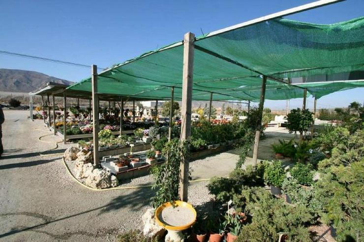 Bild 5: Gartencenter * mit Bauland für Wohnhaus