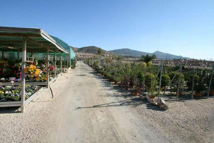 Bild 6: Gartencenter * mit Bauland für Wohnhaus