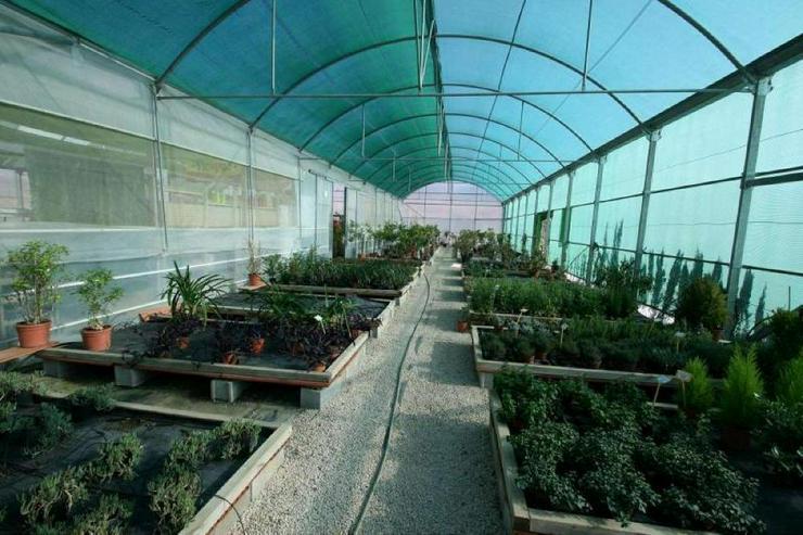 Bild 4: Gartencenter * mit Bauland für Wohnhaus