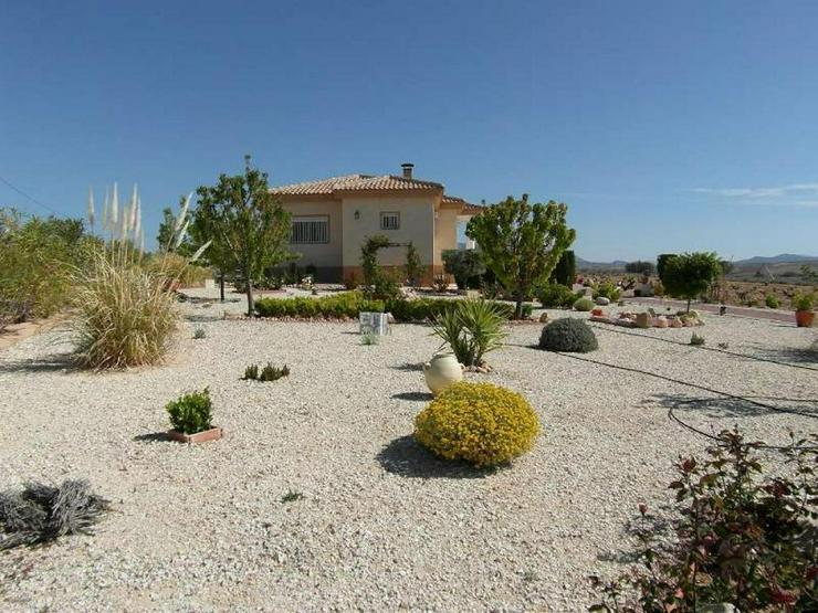 Bild 2: Herrliche Villa inmitten der Weingärten um Pinoso