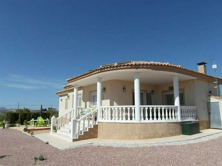 Herrliche Villa inmitten der Weingärten um Pinoso - Haus kaufen - Bild 1