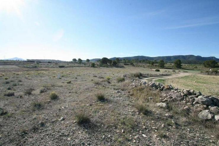 Bauland - Grundstück kaufen - Bild 2