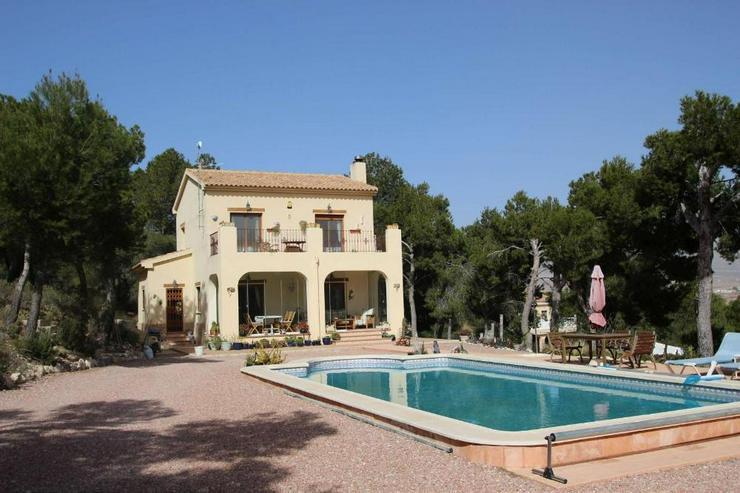 Schöne Villa im Pinienwald - Haus kaufen - Bild 1