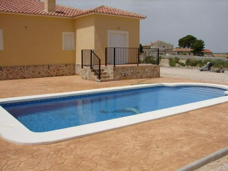 Bild 2: Musterhaus mit Pool