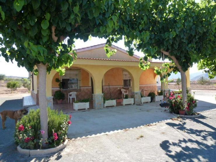 Landhaus mit herrlichem Ausblick - Haus kaufen - Bild 1