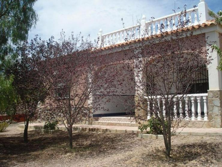 Bild 2: Mandelbäume umschließen dieses schöne Landhaus