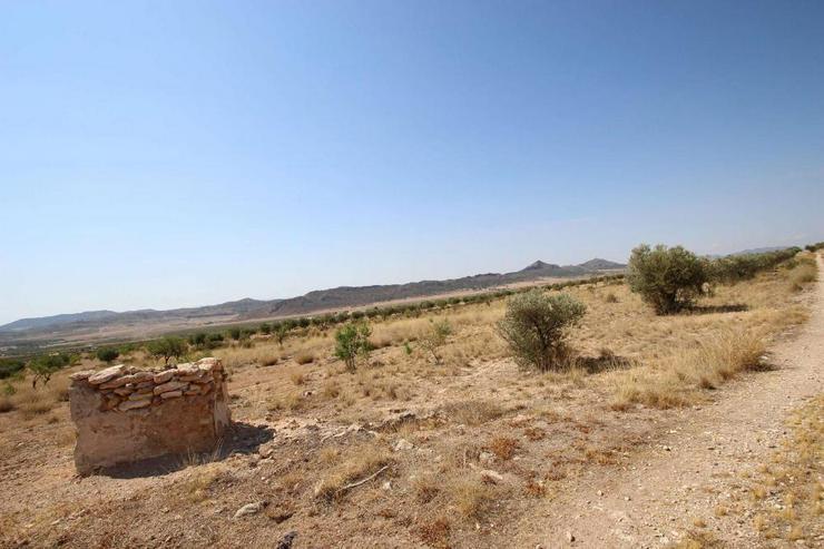 Bild 5: Bauland mit Ruine