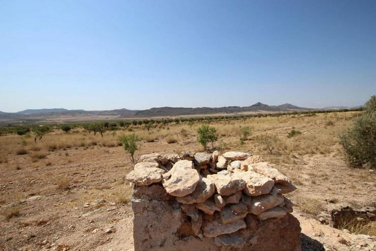 Bild 7: Bauland mit Ruine