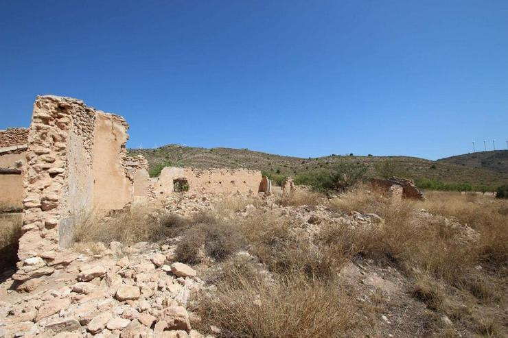 Bild 2: Bauland mit Ruine