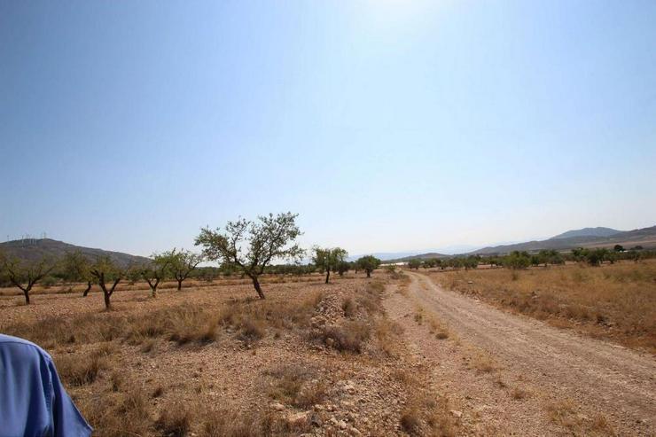 Bild 3: Bauland mit Ruine